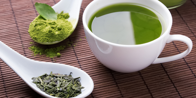 Green Tea Extract Combined with Exercise Reduces Fatty Liver Disease in Mice