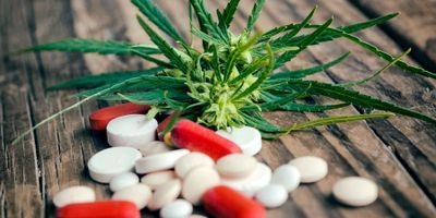Drug Interactions with Cannabinoids: 5 Things to Know