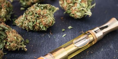 Study Indicates Vaporized Cannabis Creates Drug-Seeking Behavior