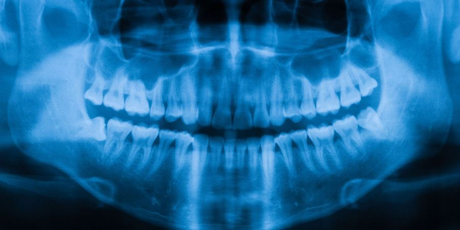 Teeth Serve as 'Archive of Life,' New Research Finds