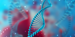 3D Genetic Structure in Blood Cancer Important Beyond DNA Code Changes