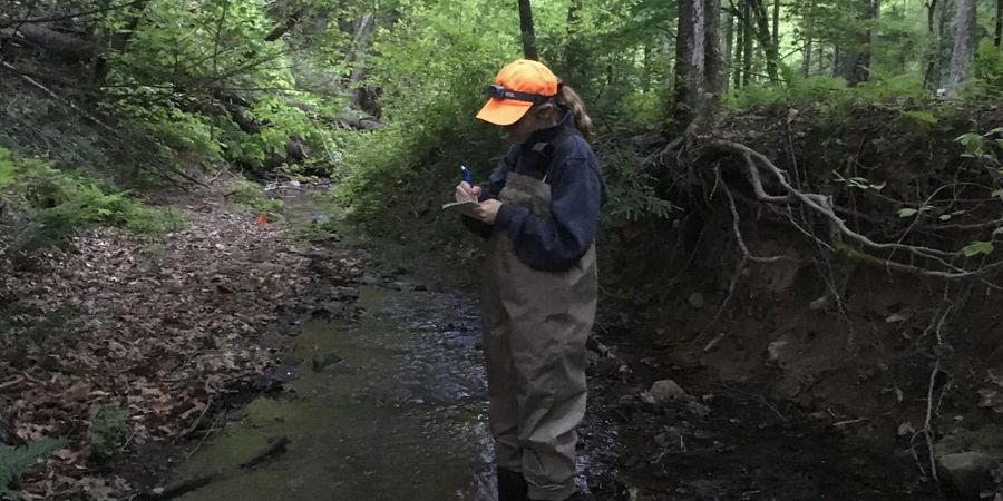 Stream Pollution from Mountaintop Mining Doesn't Stay Put