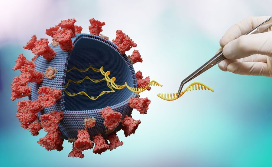 Total Nucleic Acid Extraction for Pathogen Detection