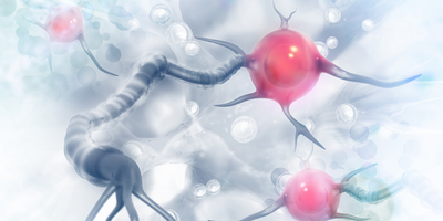 Gene-Network Analysis: A Valuable New Tool for Understanding Alzheimer's Disease