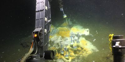 New Ethane-Munching Microbes Discovered at Hot Vents