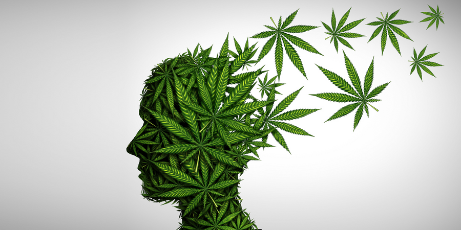 History of Cannabis Dependence Linked to Poor Mental Health