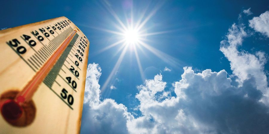 How to Handle Heat Stress