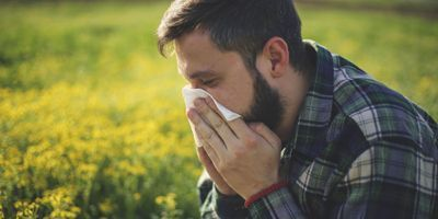 Nasal Biomarkers Predict Severity of Pollen Allergy Symptoms