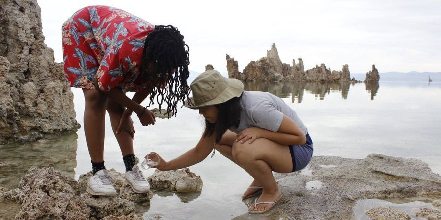 Study Reveals Importance of Field Courses in STEM Diversity
