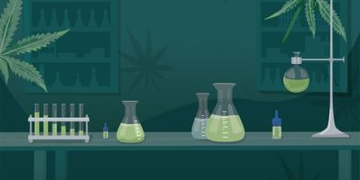 Managing a Cannabis Lab