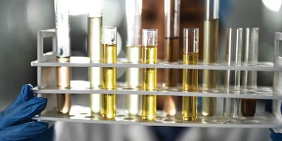 Developing a Standard for Cannabis Sample Prep in Quality Control Testing