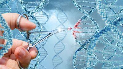 Tomorrow's Genome Editing