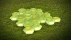 Innovative Screening Method Finds Rifabutin Can Fight Acinetobacter baumannii Superbug