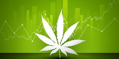 Gaps in Data on Marijuana Use Limit Public Health Response