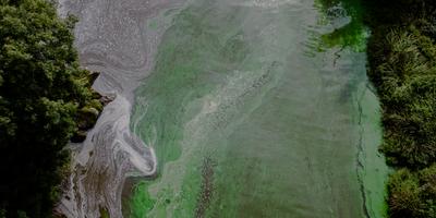Nitrogen Pollution Policies Lag behind Scientific Knowledge