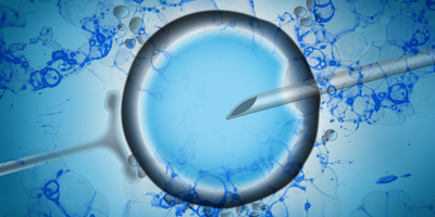 Abnormal Cells in Early-Stage Embryos Might Not Preclude IVF Success