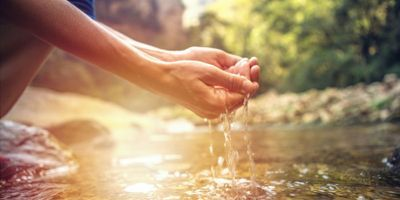 Purifying Water with the Help of Wood, Bacteria, and the Sun