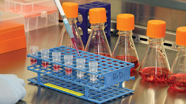 Phd thesis cell culture