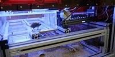 Scientists Engineer Mouse 'Smart House' to Study Behavior