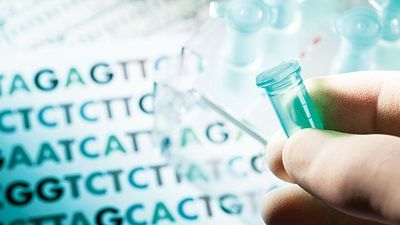 Exome Sequencing as a Diagnostic Tool