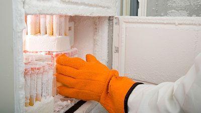 Accessories Enhance Laboratory Cold Storage