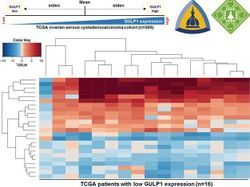 Epigenetic Markers of Ovarian Cancer