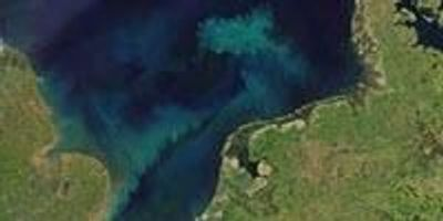Study: Much of the Surface Ocean Will Shift in Color by End of 21st Century