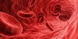 Early Prediction of Alzheimer's Progression in Blood