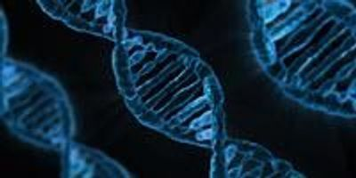 New Method Facilitates Study of the Effects of Chemicals on DNA