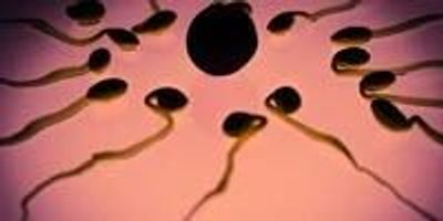 Recurrent Miscarriage Linked to Faulty Sperm