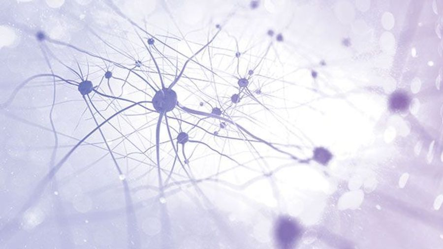 Probing Neurological Diseases with Stem Cells
