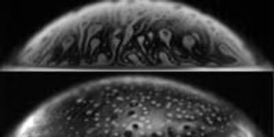 Bursting Bubbles Launch Bacteria from Water to Air