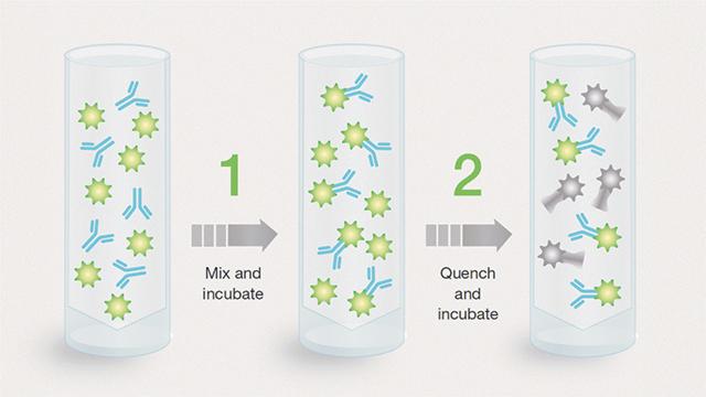 ReadiLink antibody labeling kits
