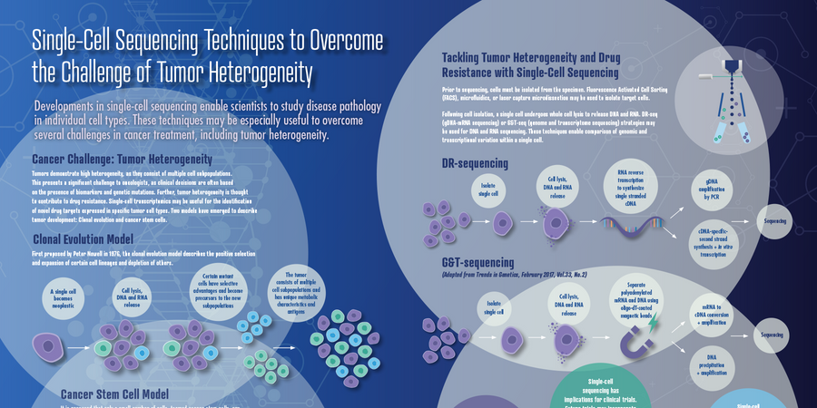 Single-Cell Sequencing Techniques to Overcome the Challenge of Tumor Heterogeneity