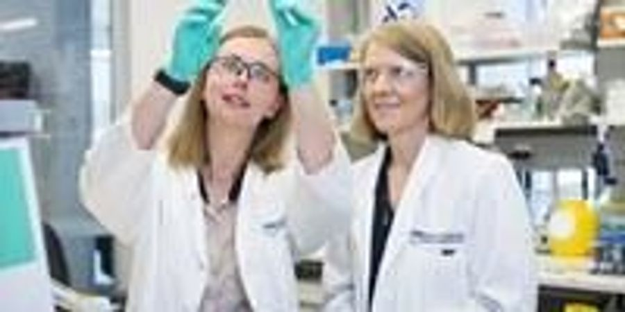 Discovery Paves Way for Improved Ovarian Cancer Care