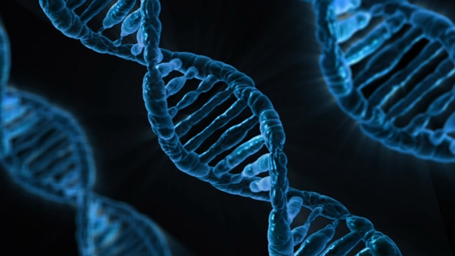 DNA-sequencing