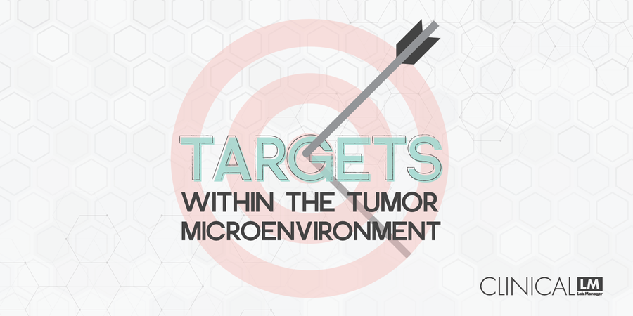 Targets Within the Tumor Microenvironment