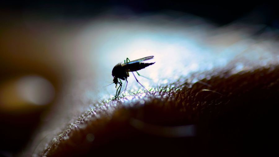Better Access to Reagents Is Needed for Neglected Tropical Disease Research