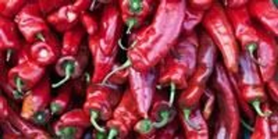 Anti-Obesity Drug Derived from Chili Peppers Shows Promise in Animal Trials