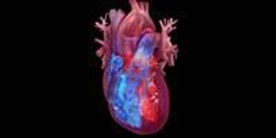 World Trade Center Response Crews May Face Higher Heart Attack, Stroke Risk