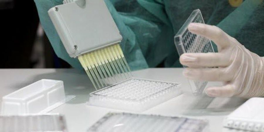 A Promising New Tool to Measure Antibodies Against Malaria
