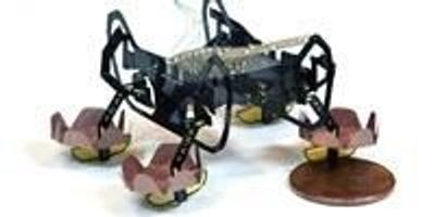 Next-Generation Robotic Cockroach Can Explore Underwater Environments