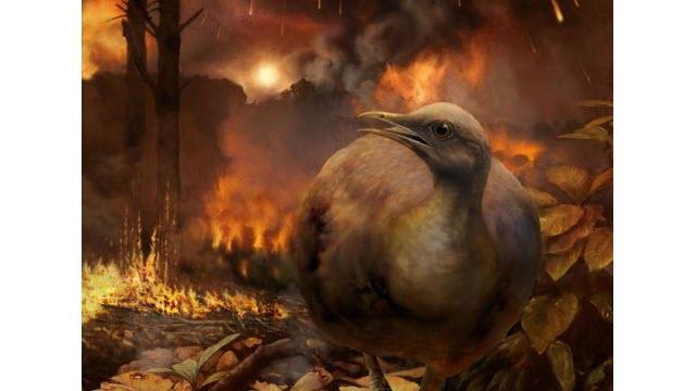 dinos-birds