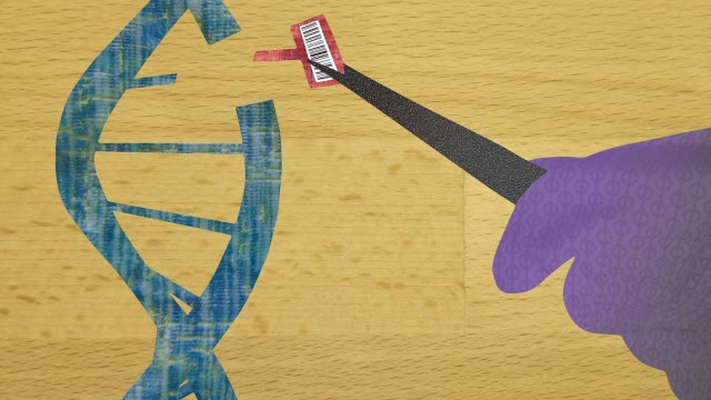 DNA Barcode Editing Illustration