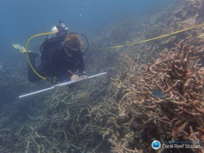 Global Warming Transforms Coral Assemblages