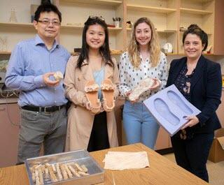 mushroom shoe project team