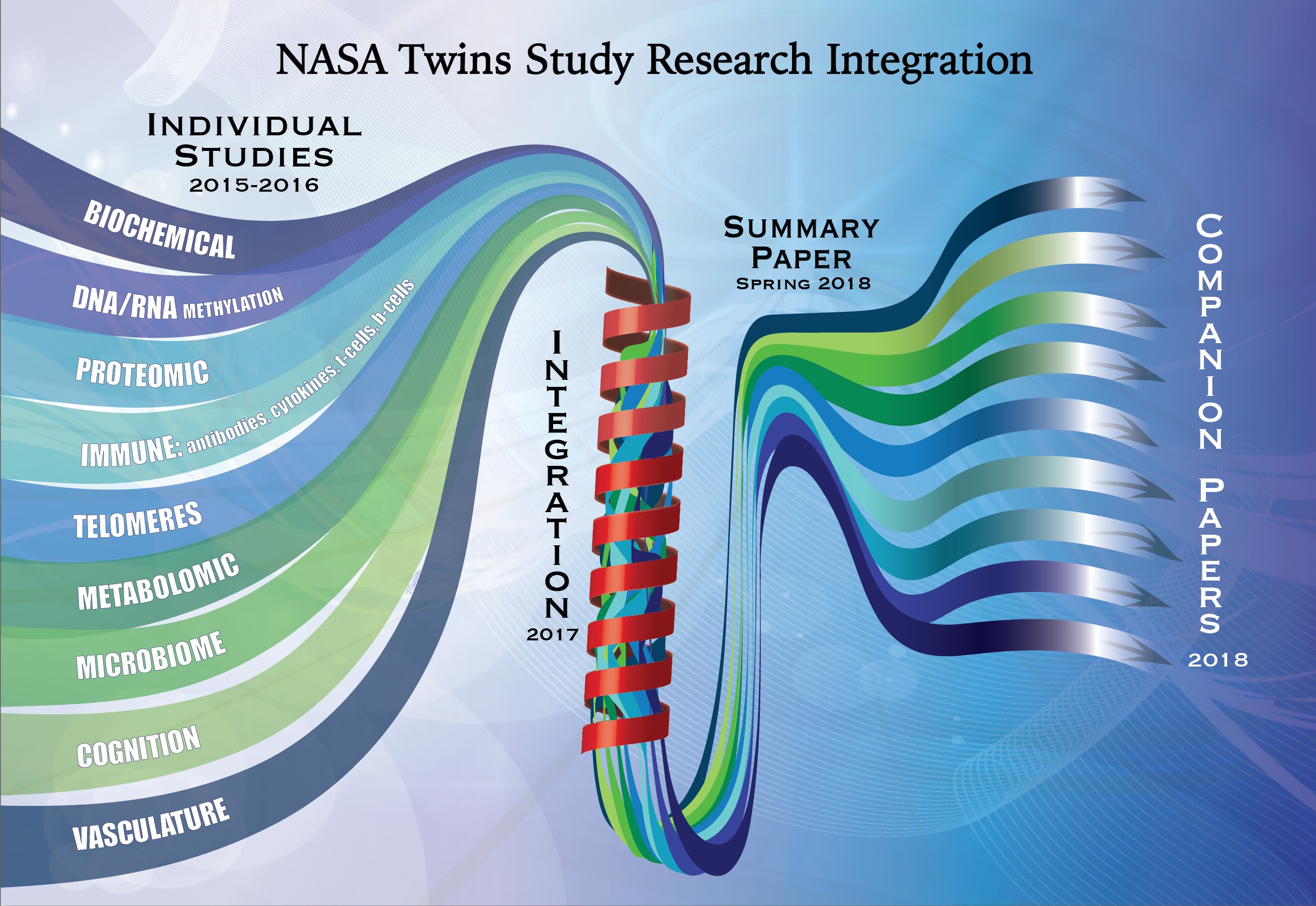 Graphic illustration of the path the individual Twins Study research