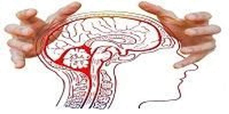 Is YOUR Stress Changing MY Brain?