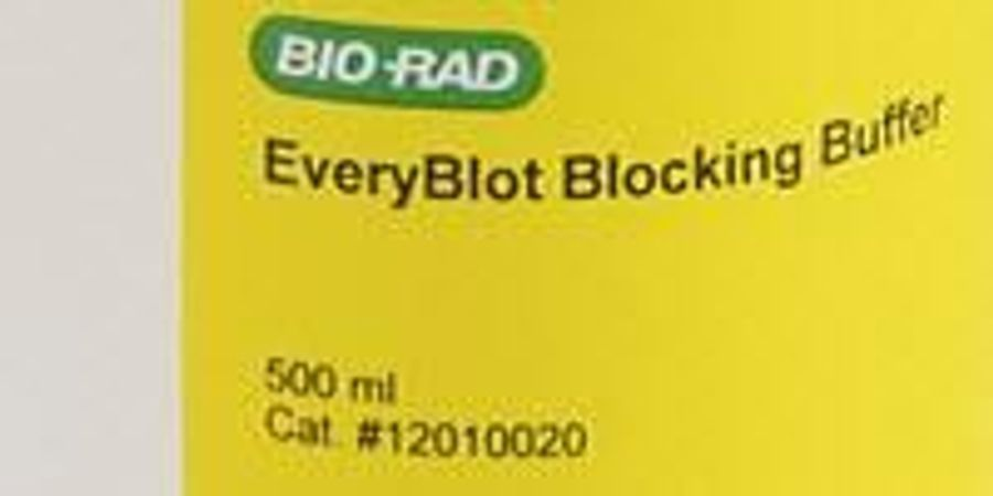 Bio-Rad Introduces EveryBlot Blocking Buffer that Offers 5-Minute Blocking Time and Greater Sensitivity for Western Blots