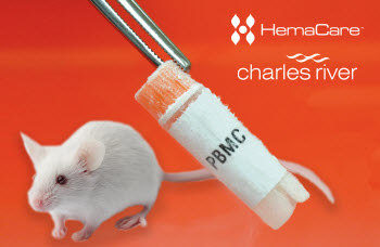 PBMC humanization kits for NCG mouse models